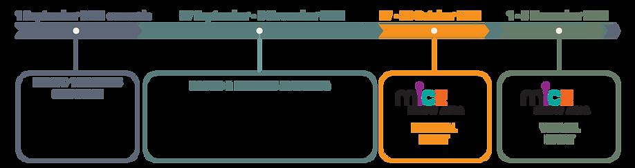 msa-bm-timeline-2021-1.png
