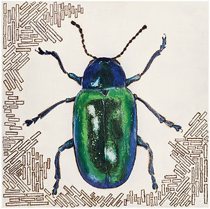 Dogbane Beetle (sold)