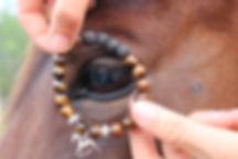 fleur eye jewelry.jpg