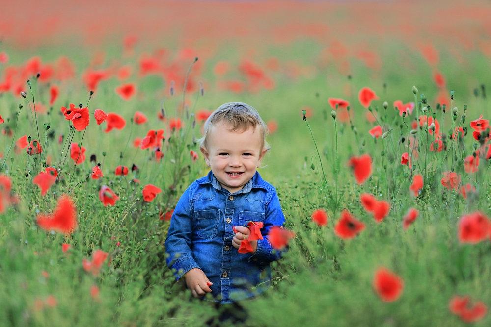 Poppy fields Family