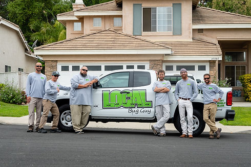 Expert pest control from the local bug guy in Temecula