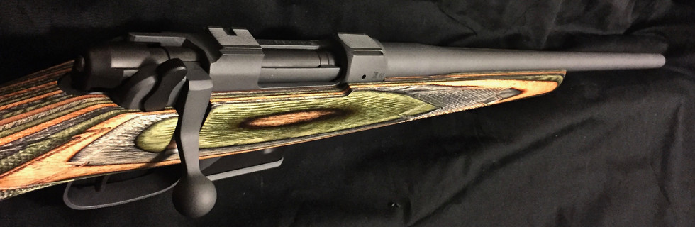 Cerakote Black Custom Rifle