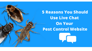 5 Reasons Your Pest Control Company Should Use Live Chat On Your Website