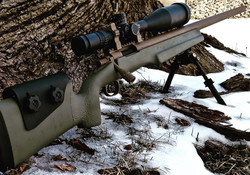 Cerakote Green Rifle