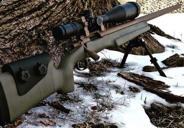 Cerakote Two Tone Custom Rifle