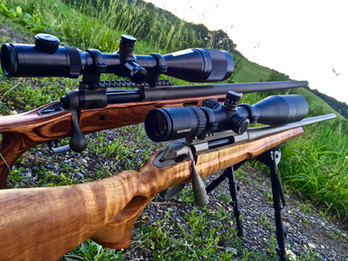 Cerakote Clear Coat Rifle