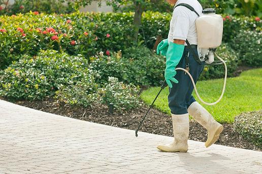preventative pest control plans