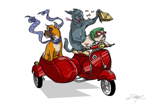 """""""Sidecar"""""""