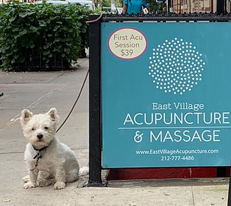acupuncture-clinic-sign-nyc.jpeg