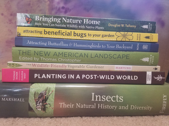 Gardening for good bugs part I: nectar and pollen sources