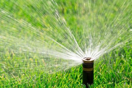 Irrigation pic.jpg