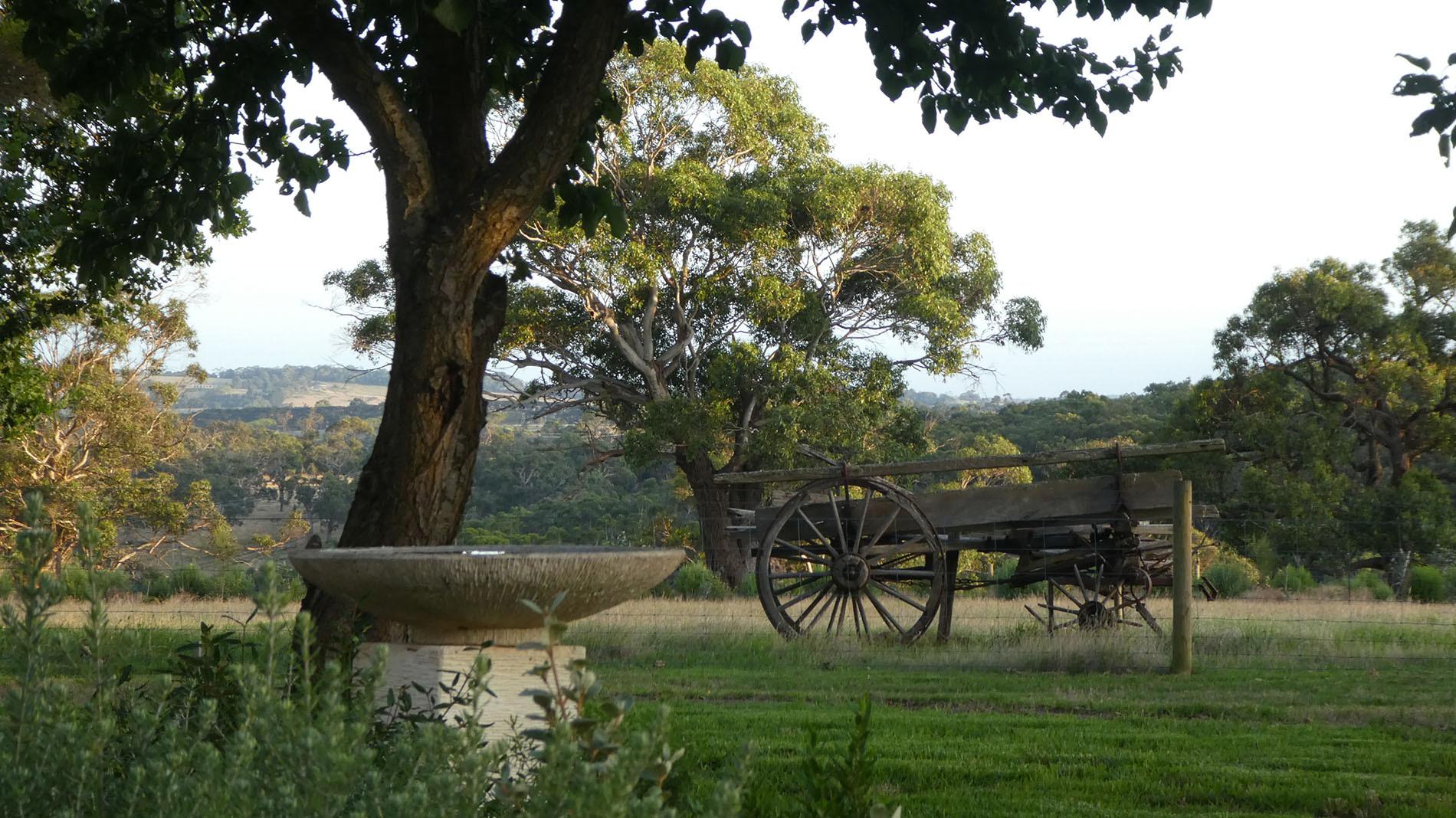Birdbath and old wagon