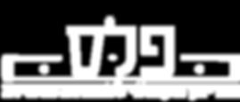פלס לוגו.png