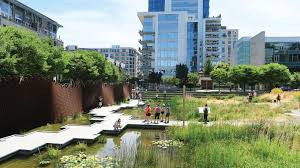 Green Infrastructure Solutions for Municipal Challenges for Managing Stormwater
