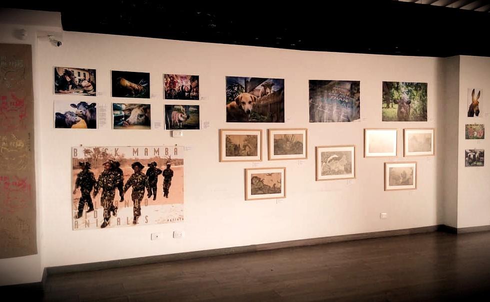 EvoluZOOn Cine Animal Fest Exposiciones artísticas Restaurante Hebívoro