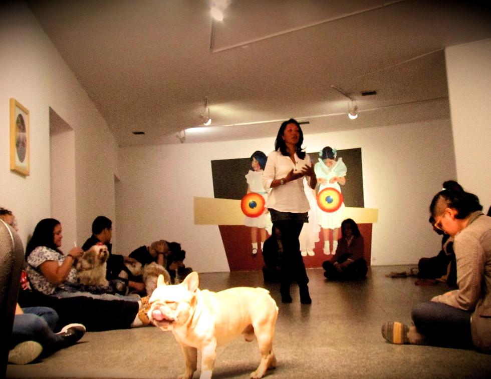 EvoluZOOn MAC Museo de Arte Contemporáneo Bogotá