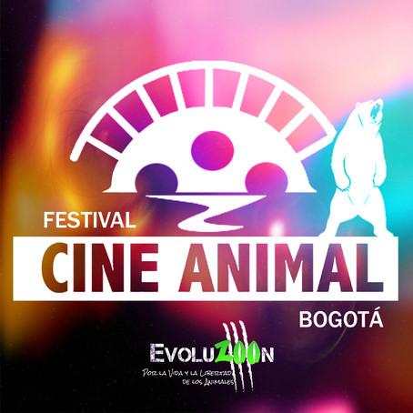 ABRIMOS LA CONVOCATORIA INTERNACIONAL PARA EL IV Festival CINE ANIMAL Bogotá 2019