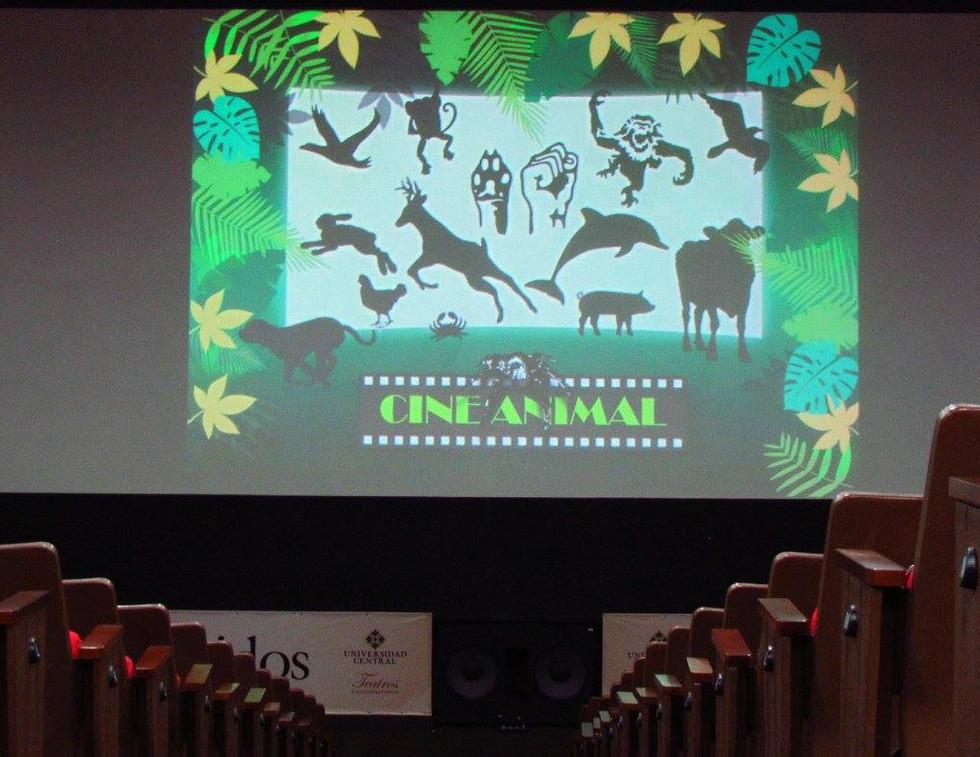 EvoluZOOn Cine Animal Fest cineclub universidad central sala fundadores