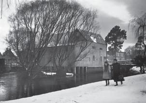 Mill Island, Otākaro/Avon River