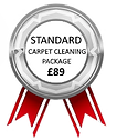 Carpet Cleaning Reading Standard Carpet Cleaning Package