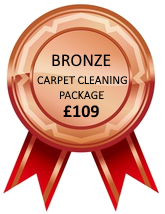 Bronze Carpet Clean Package