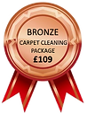 Carpet Cleaning Reading Bronze Carpet Cleaning Package
