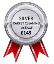 Silver Carpet Cleaning Package