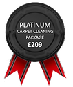 Carpet Cleaning Reading Platinum Carpet Cleaning Package