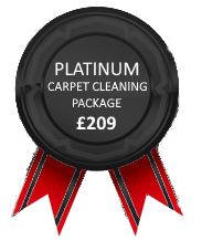 Platinum Carpet Cleaning Package
