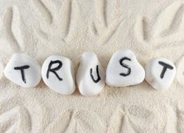 All about trust:  Part 1 – Organisational trust