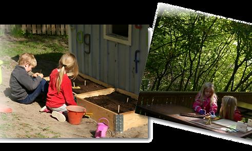 barn och växter