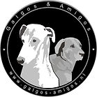 Nieuw logo GalgosAmigos.jpg