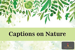 Captions on Nature