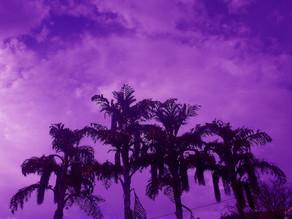 Instagram Hashtags for Purple:-