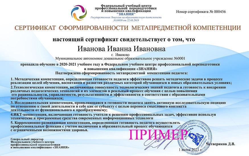 Метапредметная компетентность (1).jpg