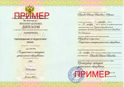 Диплом образование и педагогика Воспитатель