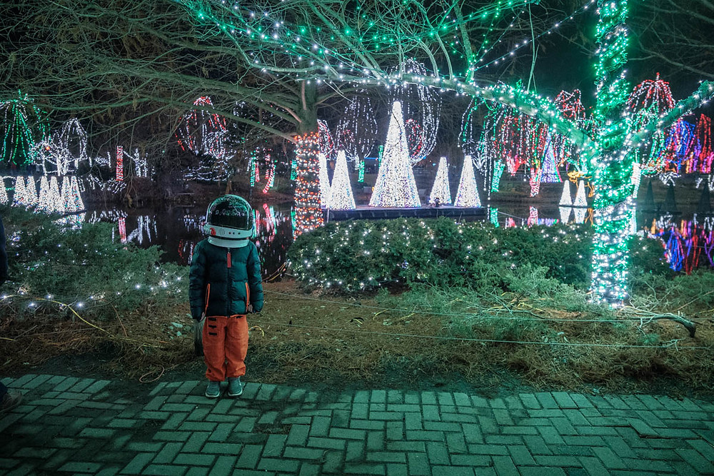 Christmas lights at Conservation Lake at Columbus Zoo and Aquarium