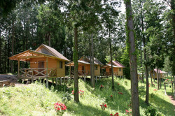 Bungalows (5 cabins)