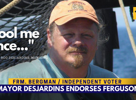 "Vet, independent mayor, 2016 Bergman voter endorses Ferguson ""Fool me once"""