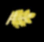logó4.png