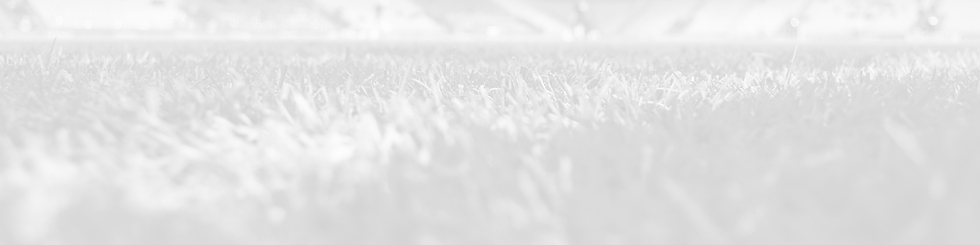 White_Grass_Background.png