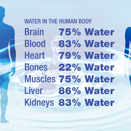 Drinking water can assist your Weight Loss
