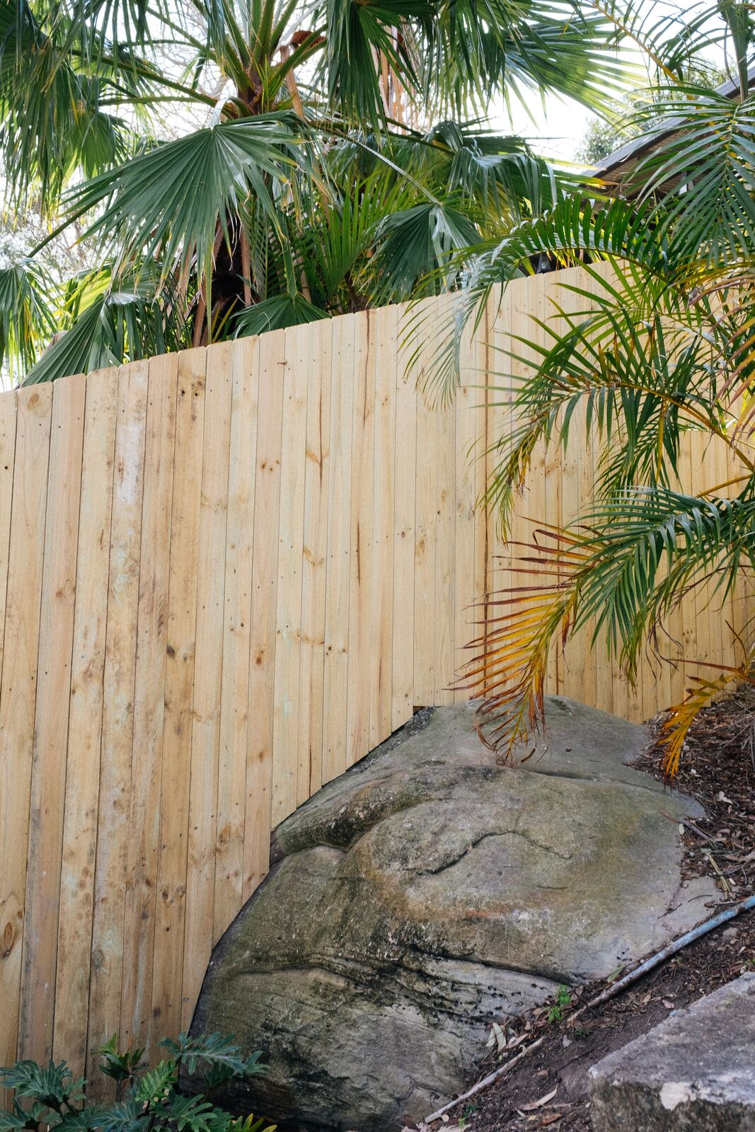 Custom Standard paling fence