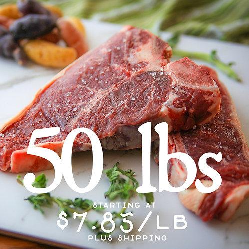 Carnivore's Quantity