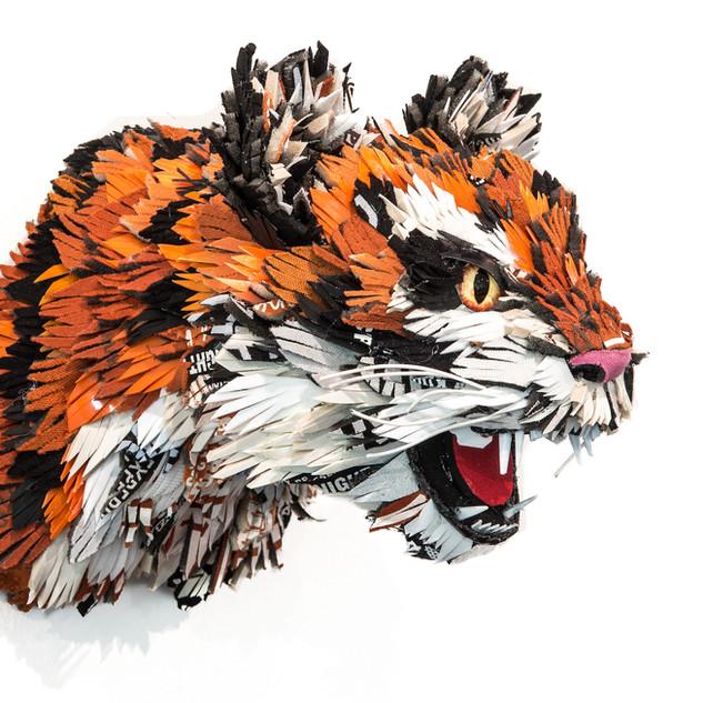 Trash Tiger, 2019