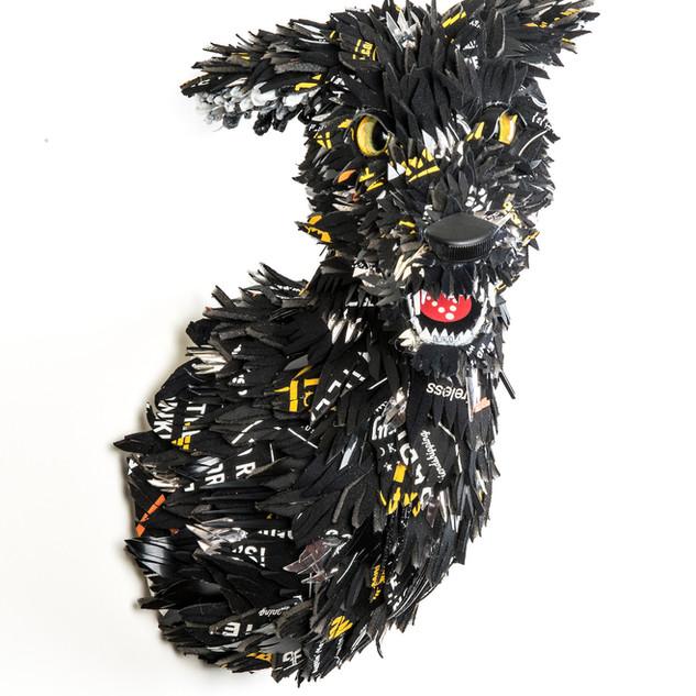Charcoal Canine, 2018