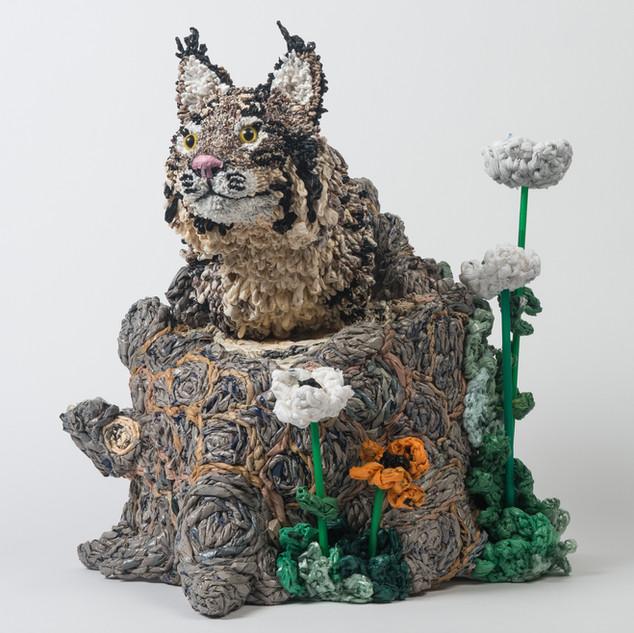 Plastic Planet Lynx, 2016