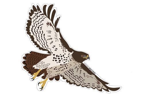 Impact Proof Red Tail Hawk