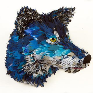 Cobalt Canine 2018