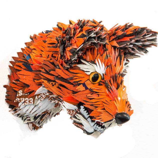 Crimson Canine, 2019